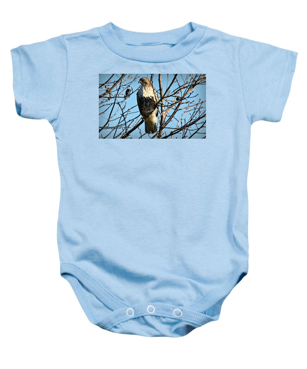 Birds Baby Onesie featuring the photograph Still Hunt by Reid Callaway
