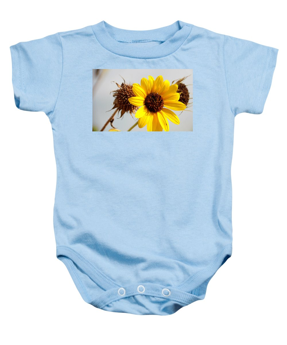 Sunflower Baby Onesie featuring the photograph Sunflower Stages by Amy Steeples