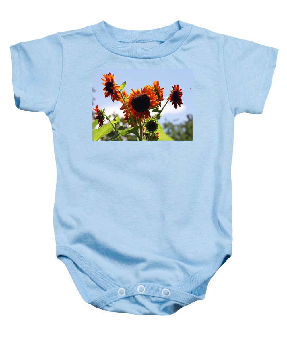 Sunflowers Baby Onesie featuring the photograph Sunflower Symphony by Karen Wiles