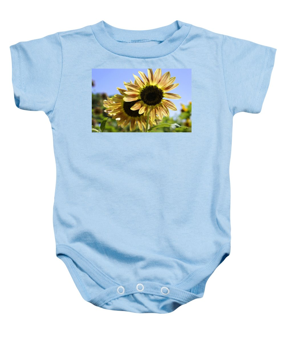 Yellow Sunflowers Baby Onesie featuring the photograph Sunny Day by Laurie Perry