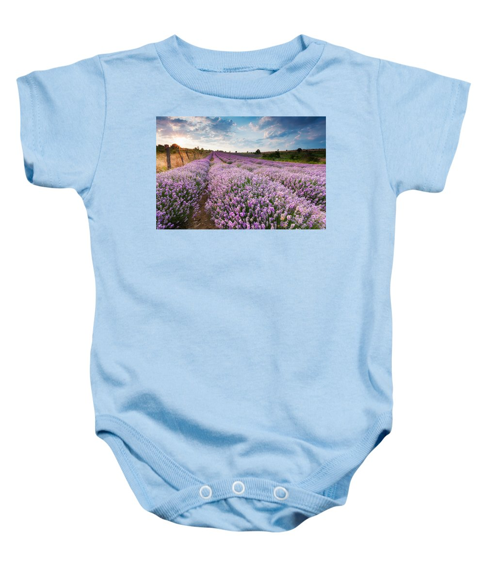 Bulgaria Baby Onesie featuring the photograph Sunny Lavender by Evgeni Dinev
