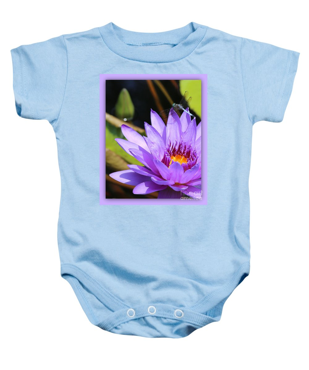 Dragonfly Baby Onesie featuring the photograph Sweet Dragonfly On Purple Water Lily by Carol Groenen