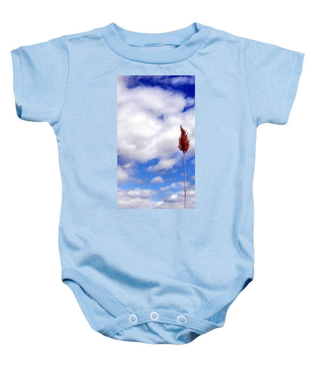 Tree Baby Onesie featuring the photograph Tall Trunks by Art Dingo