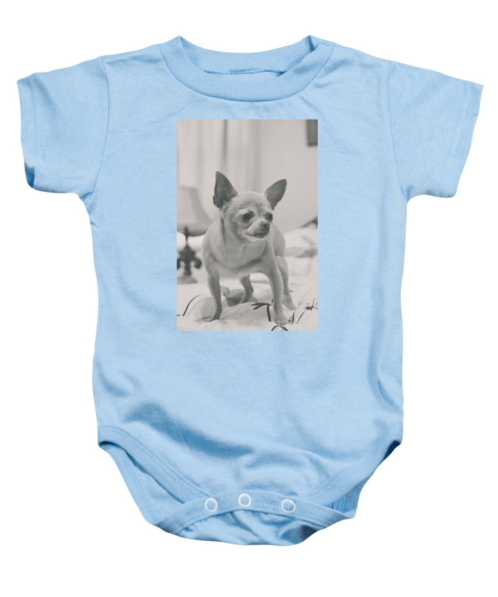 Dogs Baby Onesie featuring the photograph Tough Girl by Laurie Search