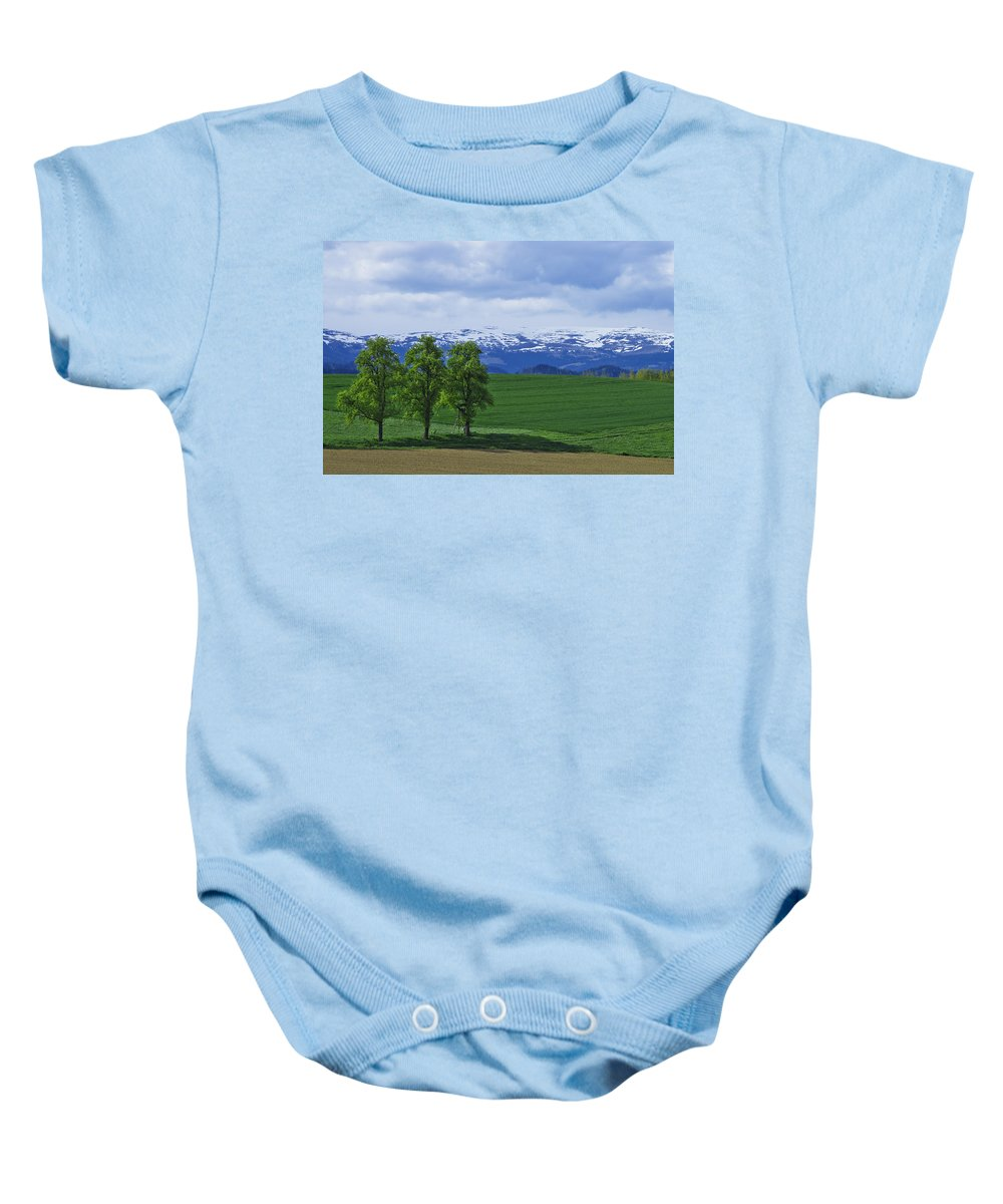 Nature Baby Onesie featuring the photograph Trees With Mountains by Ivan Slosar