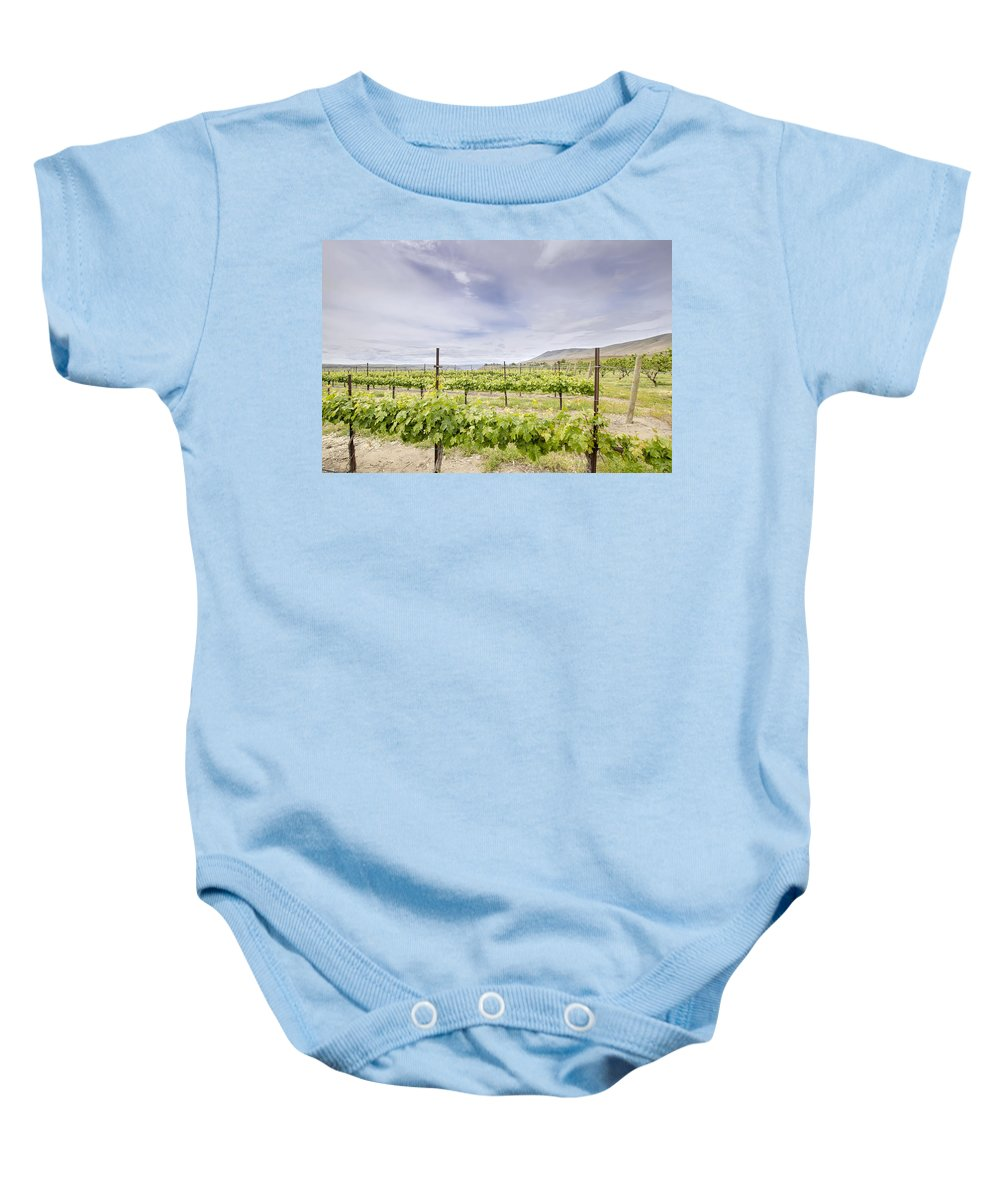 Winery Baby Onesie featuring the photograph Vineyard Landscape In Maryhill Washington State by Jit Lim