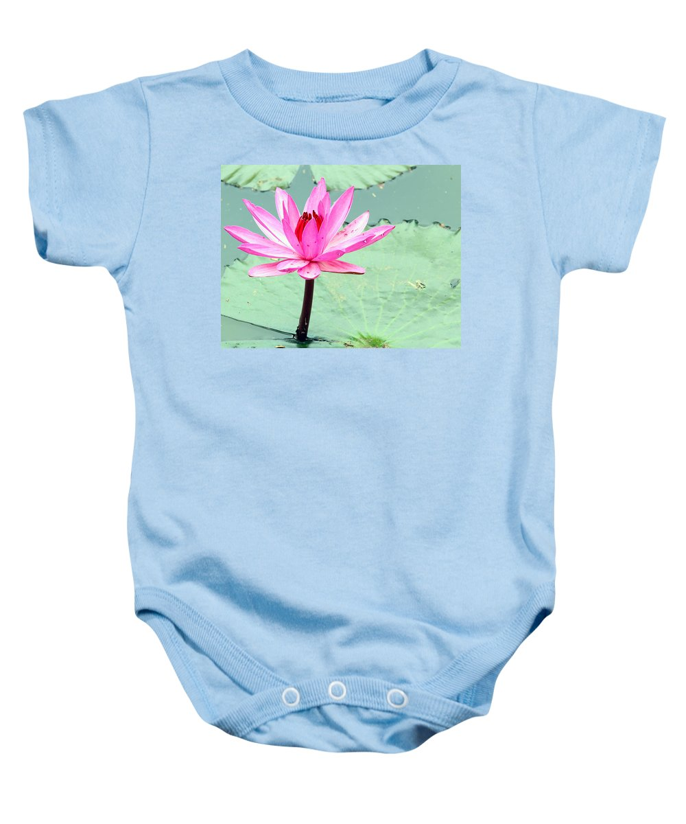 Outdoor Baby Onesie featuring the photograph Water Lily by Paul Fell