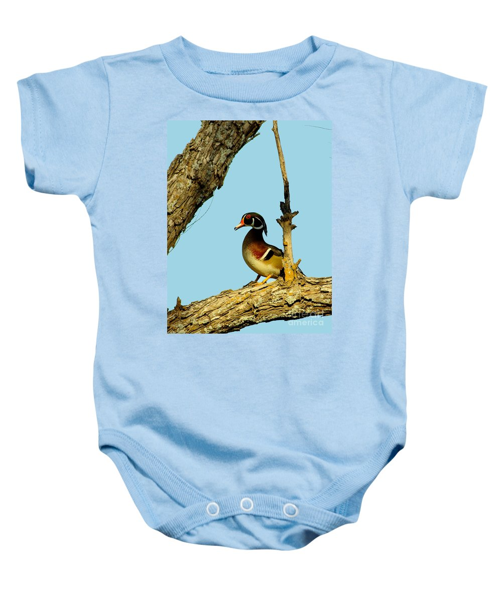 Animal Baby Onesie featuring the photograph Wood Duck Drake In Tree by Robert Frederick
