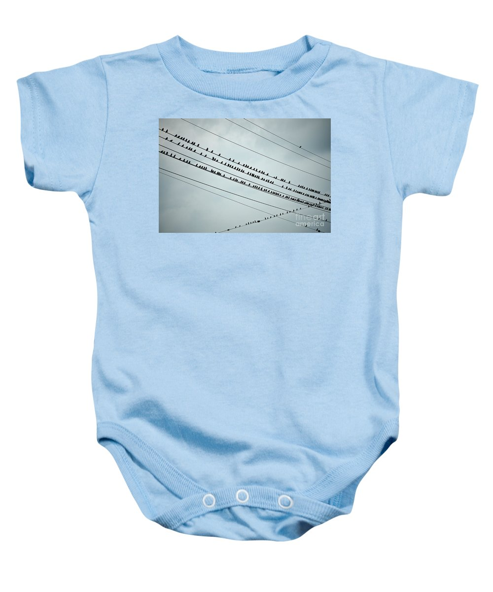 Aves Baby Onesie featuring the photograph Birds On A Wire by John Greim