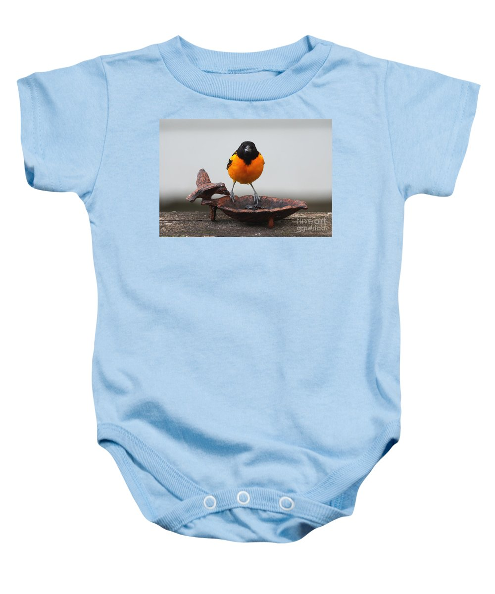 Oriole Baby Onesie featuring the photograph Oriole by Lori Tordsen
