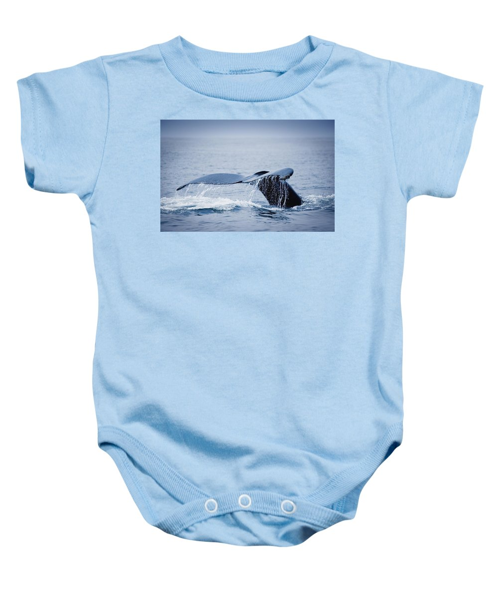 Outdoors Baby Onesie featuring the photograph Whales Fluke by Darren Greenwood