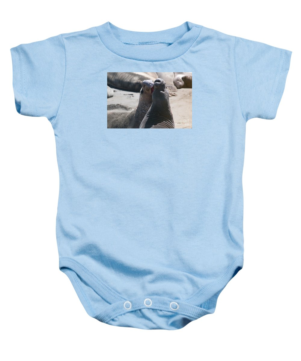 Animals Baby Onesie featuring the digital art Elephant Seal Colony On Big Sur by Carol Ailles