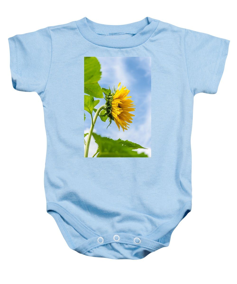 Orange Baby Onesie featuring the photograph Sunflower by Michael Goyberg
