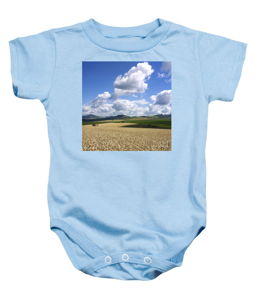 Agriculture Baby Onesie featuring the photograph A Field Of Wheat Auvergne. France by Bernard Jaubert