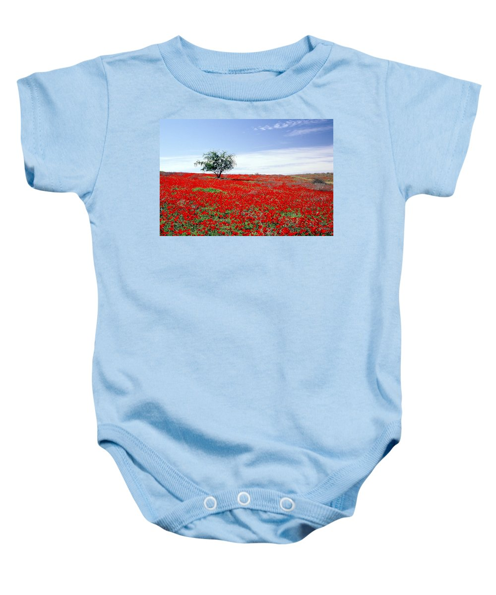 Red Baby Onesie featuring the photograph A Tree In A Red Sea by Dubi Roman