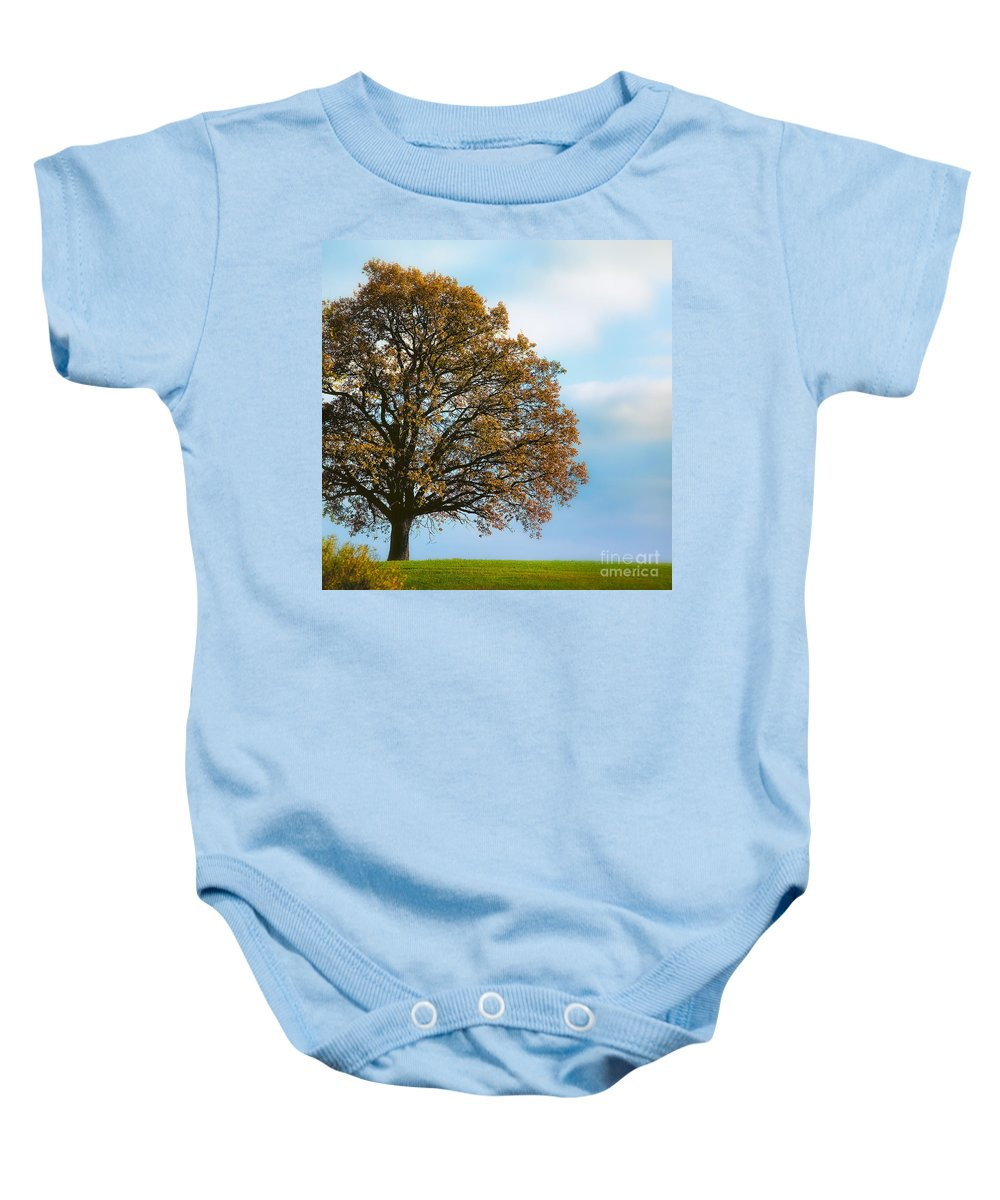 Alone Baby Onesie featuring the photograph Alone On The Hill by Ari Salmela