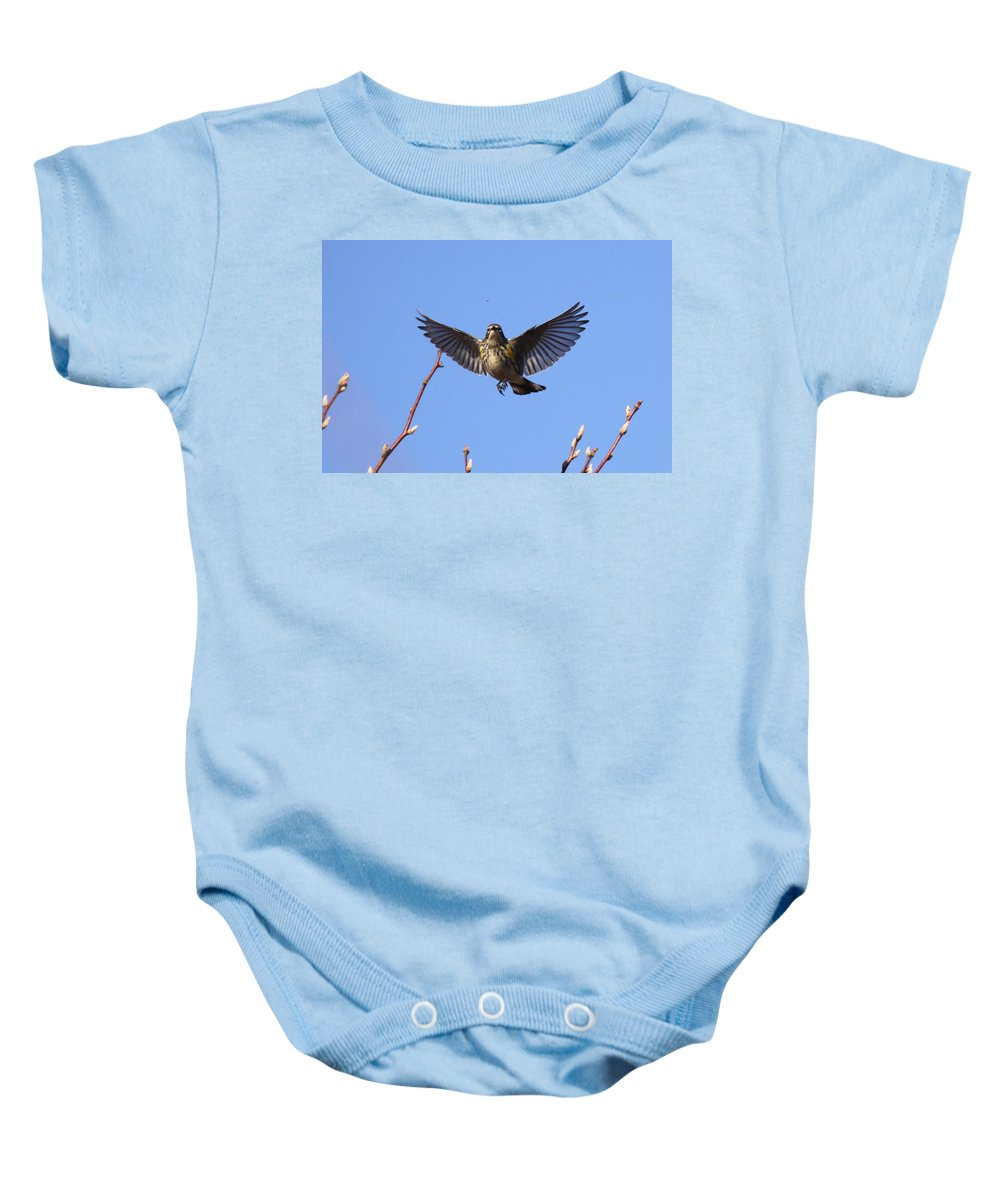 Yellow-rumped Warber Baby Onesie featuring the photograph Bird Vs Bug by Travis Truelove