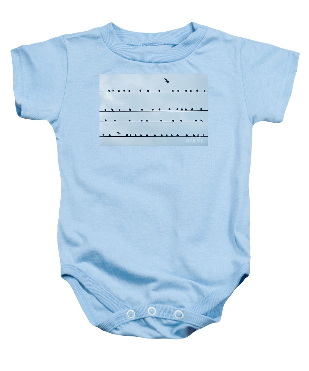 Wire Baby Onesie featuring the photograph Birds On A Wire by John Greim