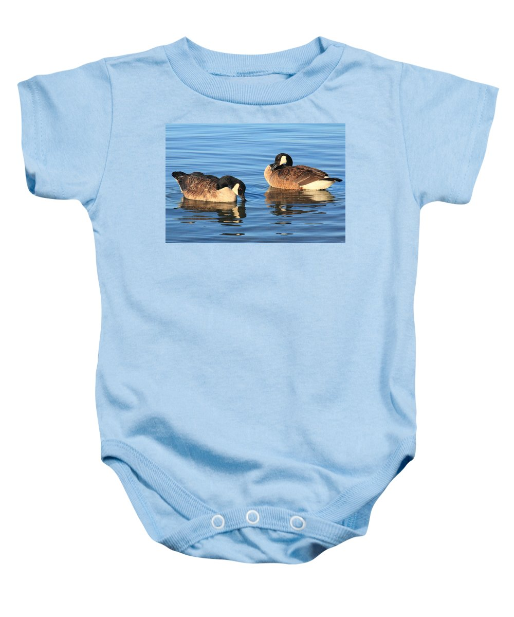 Canada Geese Baby Onesie featuring the photograph Canada Geese  by Roupen Baker