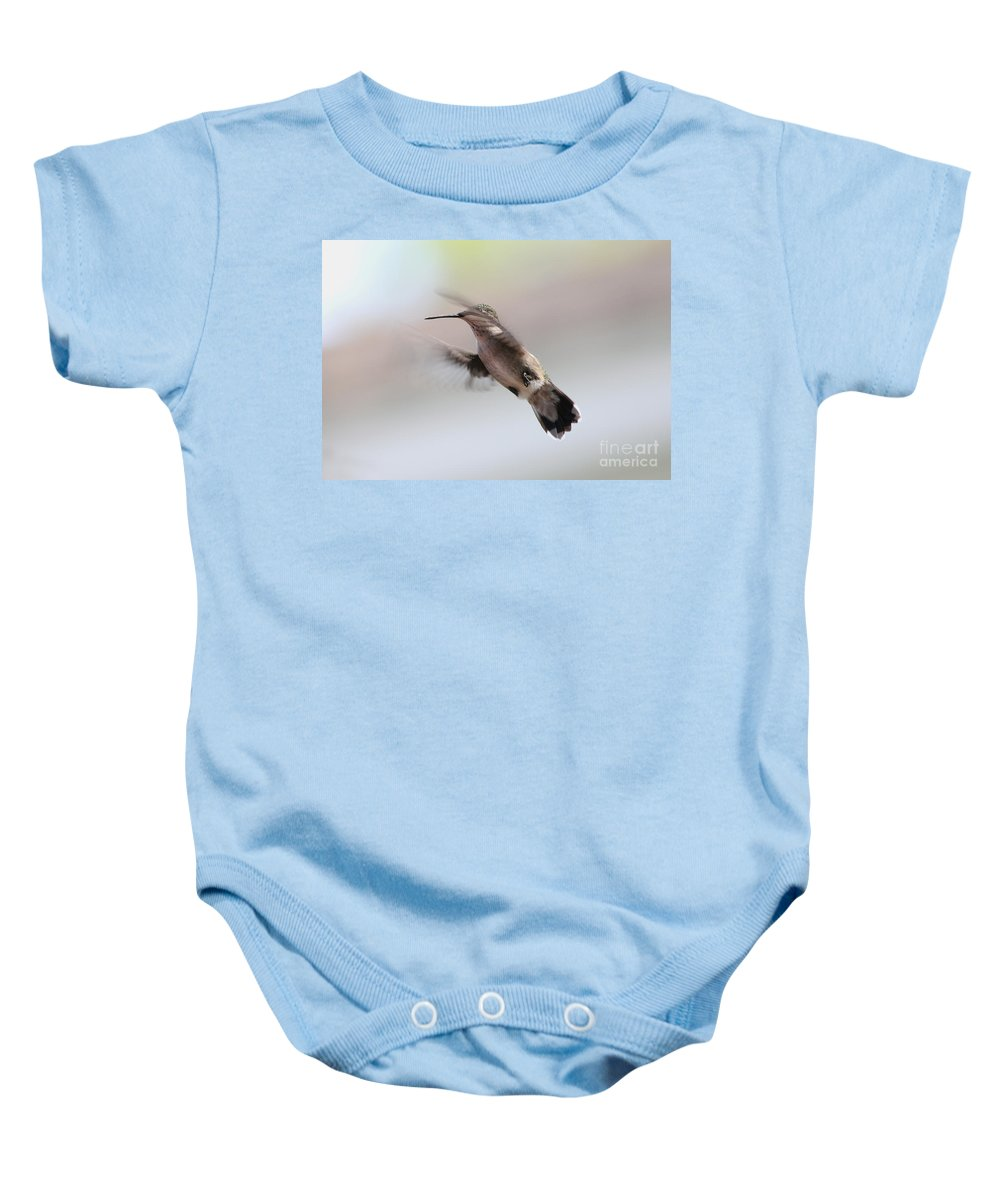 Hummingbirds Baby Onesie featuring the photograph Caught In Mid-air by Lori Tordsen