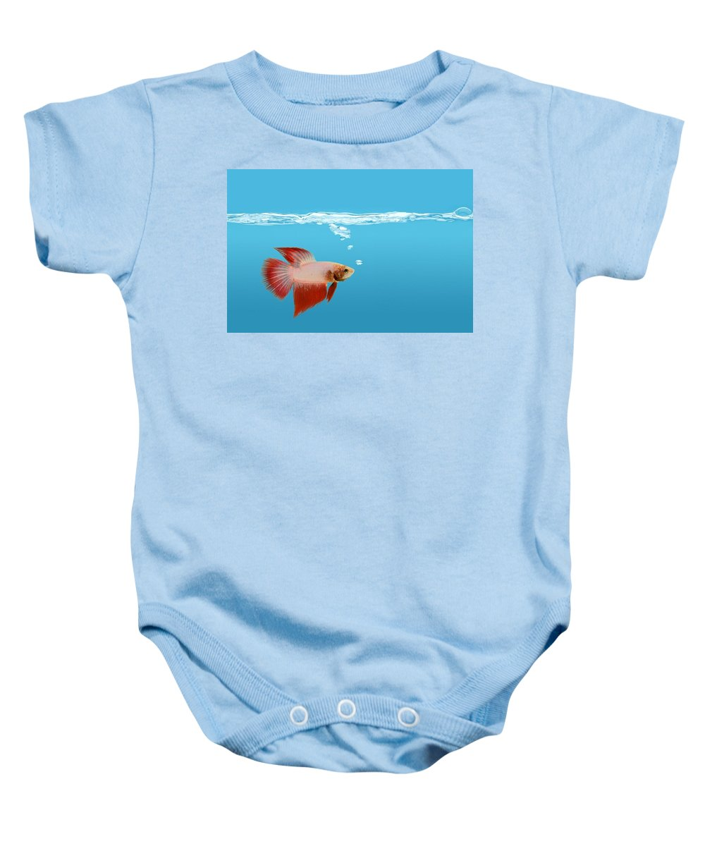 Horizontal Baby Onesie featuring the photograph Fighting Fish Under Water by Don Hammond