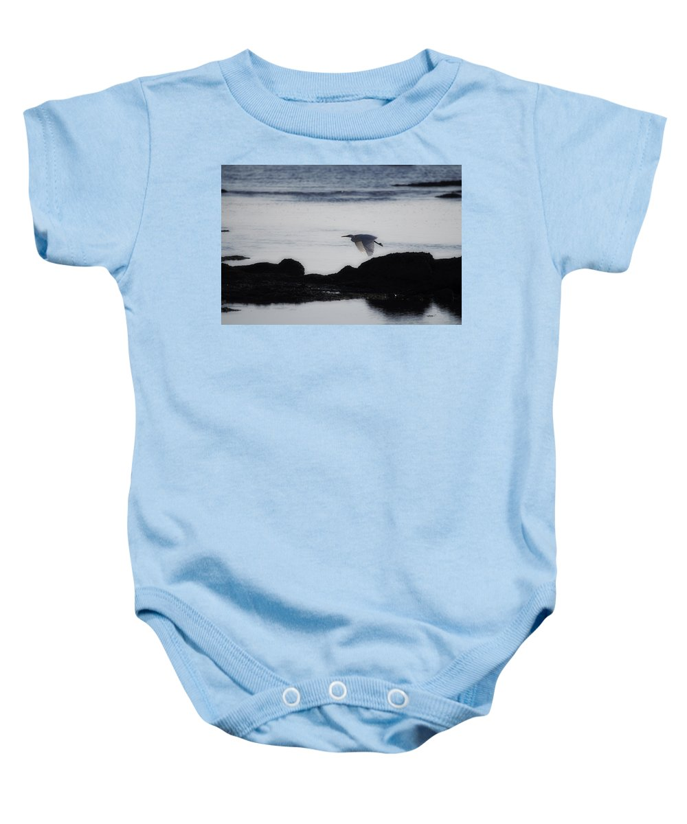 Flight Baby Onesie featuring the photograph Flight Of The Egret V2 by Douglas Barnard