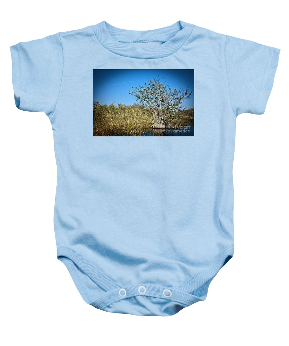 Grass Baby Onesie featuring the photograph Florida Everglades 8 by Madeline Ellis