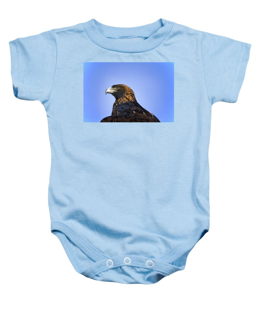 Copy Baby Onesie featuring the photograph Golden Eagle by John Pitcher