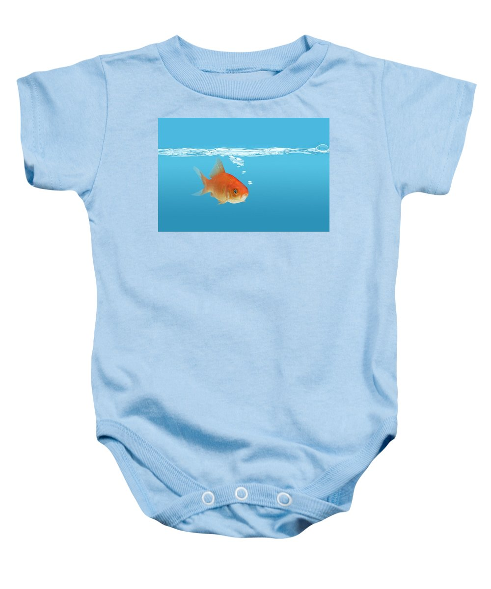 Alone Baby Onesie featuring the photograph Goldfish Carassius Auratus by Don Hammond