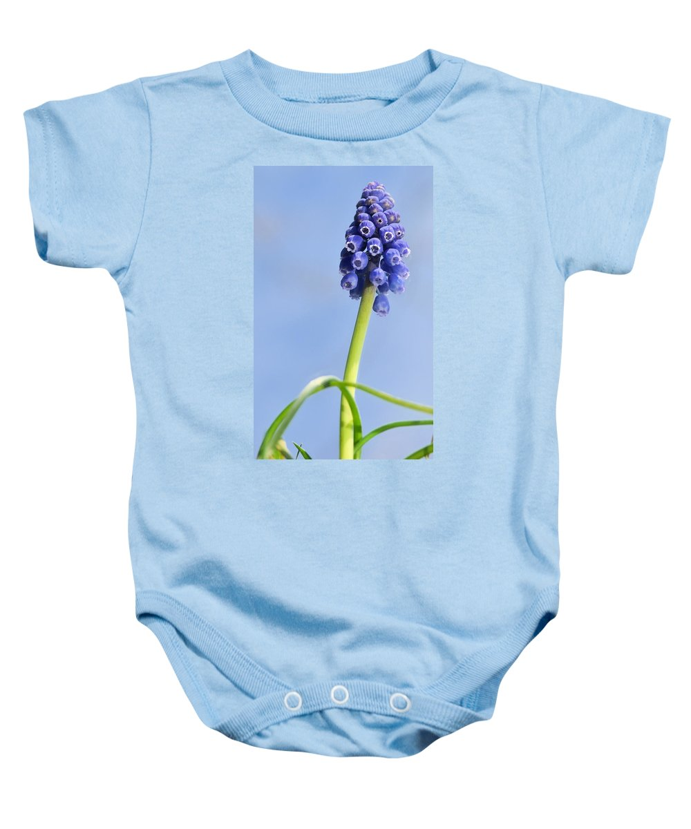 J.d. Grimes Baby Onesie featuring the photograph Grape Hyacinth by JD Grimes