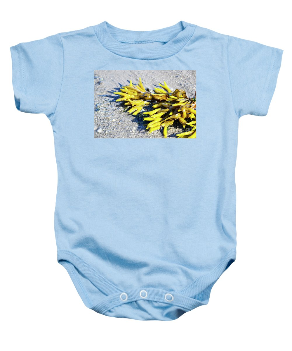 British Columbia Baby Onesie featuring the photograph Lagoon Life by Traci Cottingham