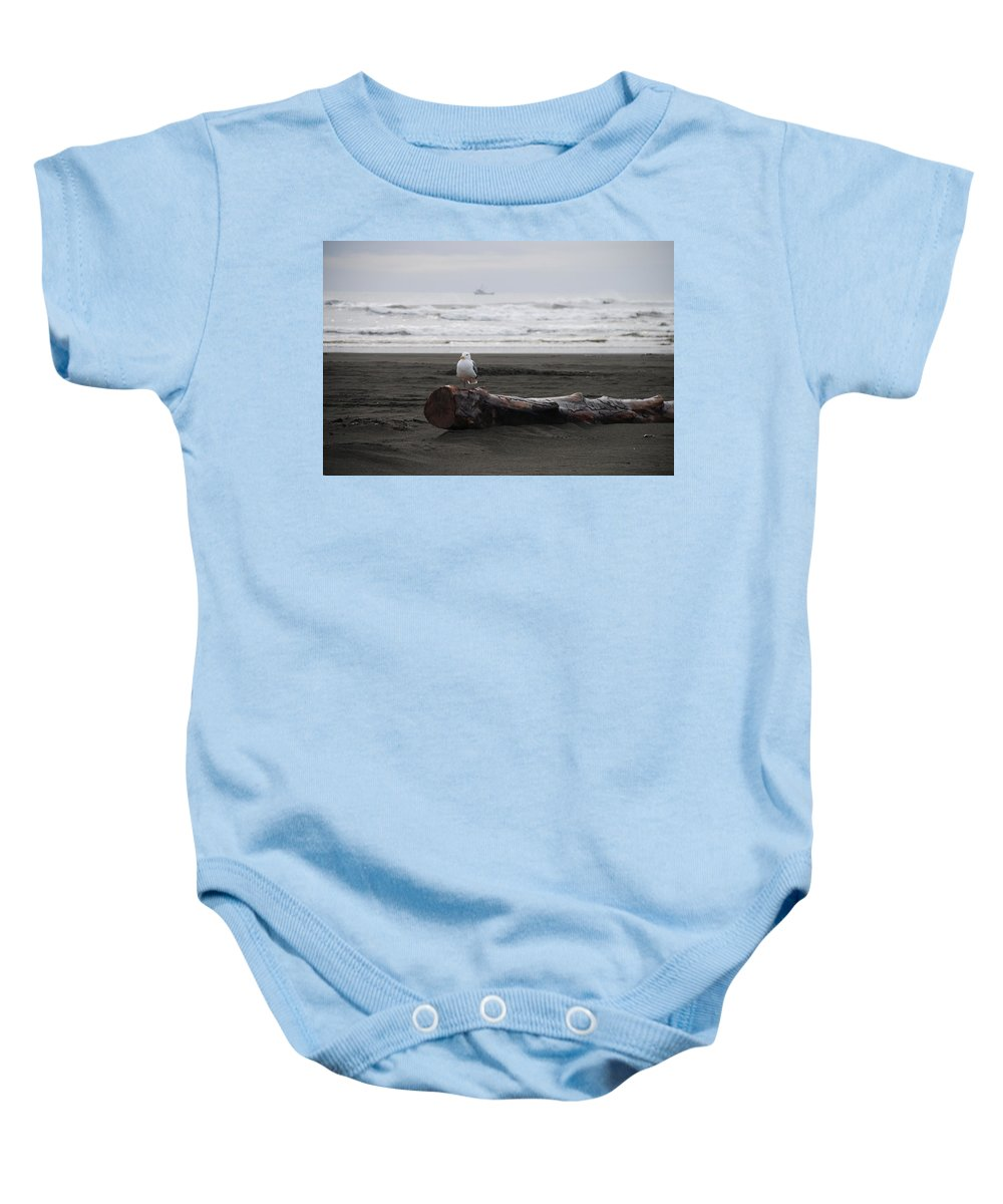 Gull Baby Onesie featuring the photograph Lone Gull by Michael Merry