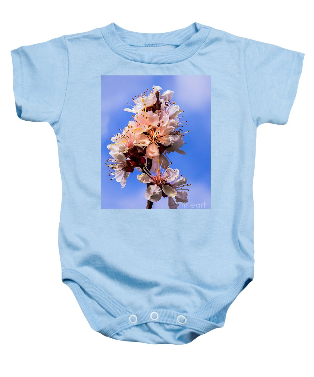 Blooms Baby Onesie featuring the photograph Looking Up by Robert Bales