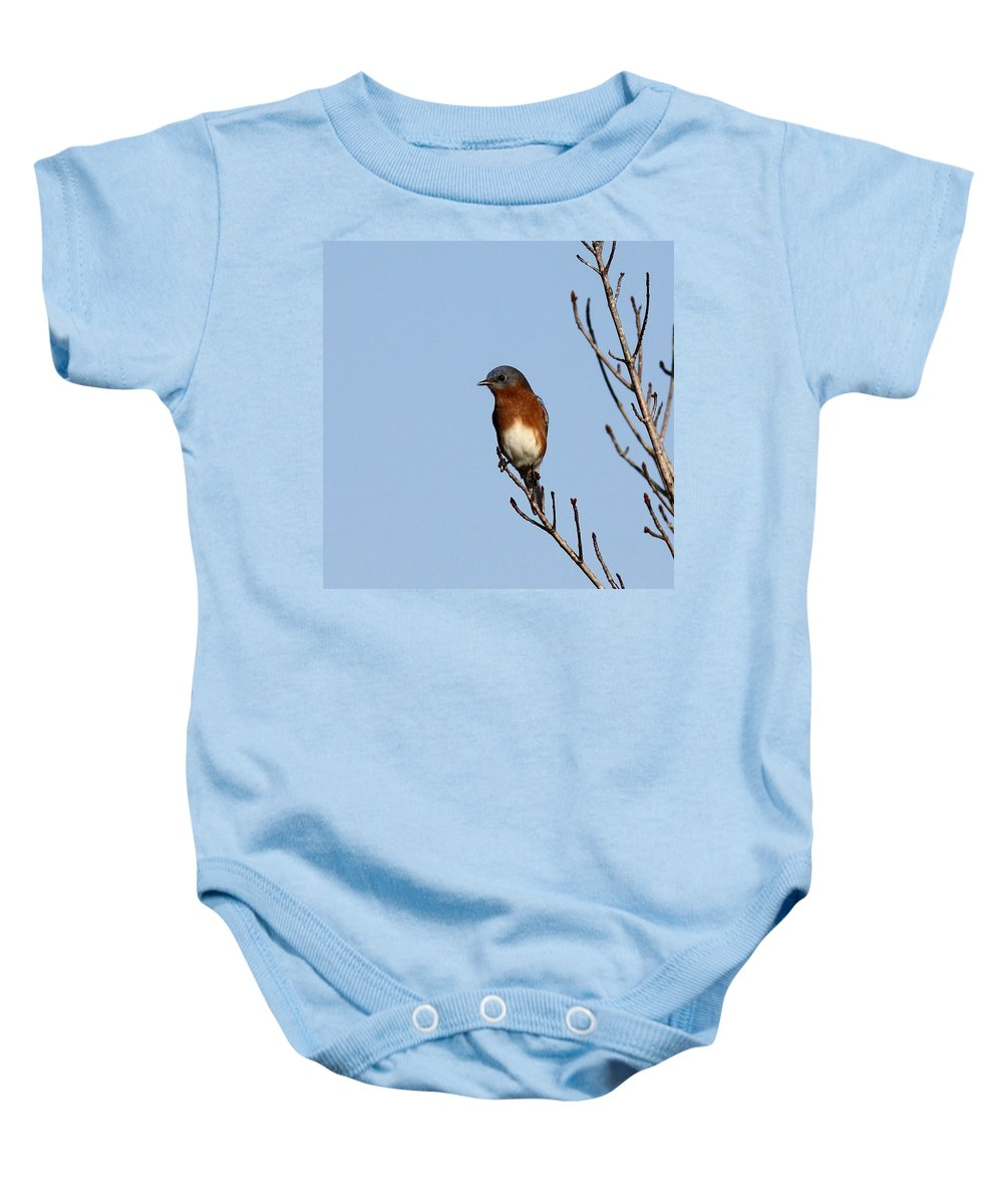 Baby Onesie featuring the photograph On The Edge by Travis Truelove