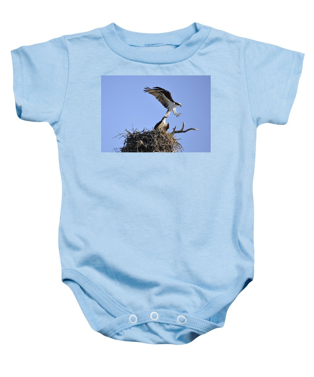 Osprey Baby Onesie featuring the photograph Osprey Coming In For A Landing by Christine Stonebridge