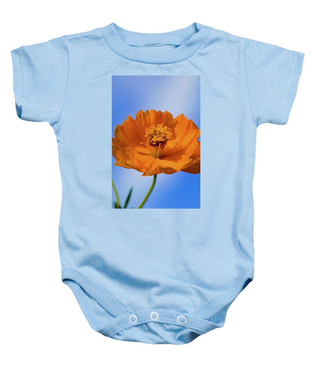 Cosmos Baby Onesie featuring the photograph Pefect In Orange by Rich Franco