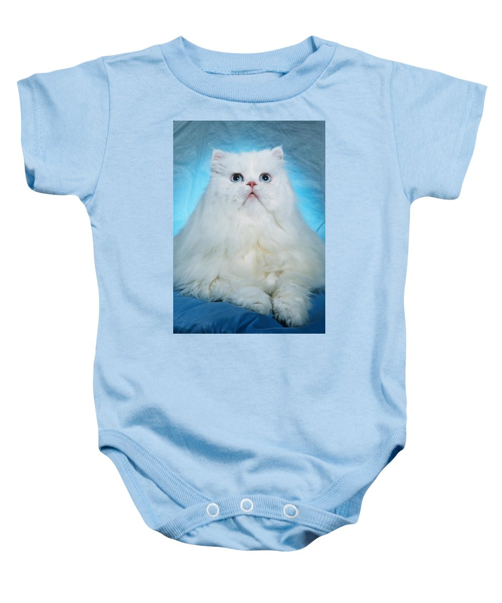 Cat Baby Onesie featuring the photograph Persian Beauty 1 by Larry Allan