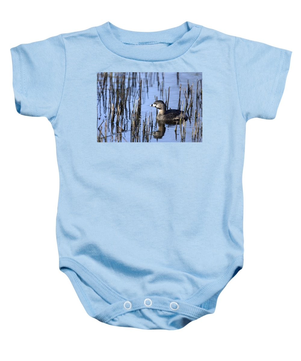 Bog Baby Onesie featuring the photograph Pied-billed Grebe, Montreal Botanical by Philippe Henry