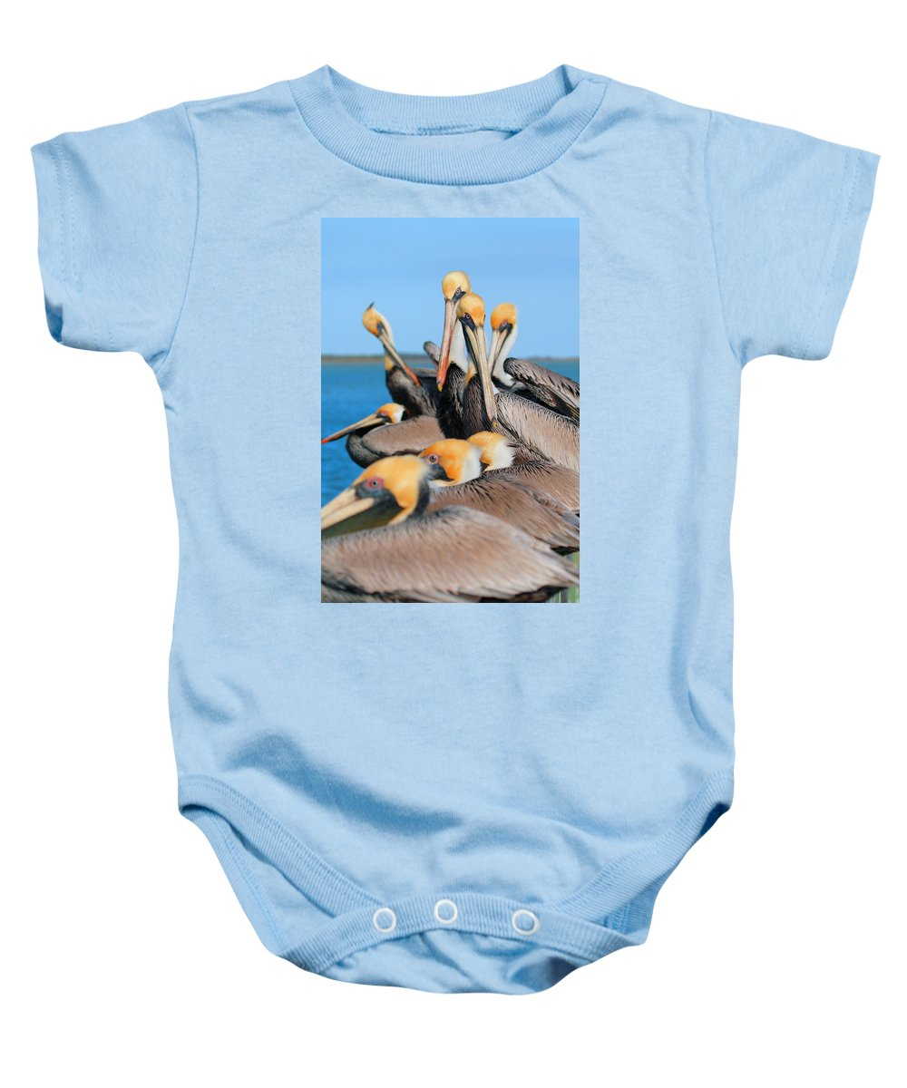 Brown Pelican Baby Onesie featuring the photograph Pier Party by Andrew McInnes