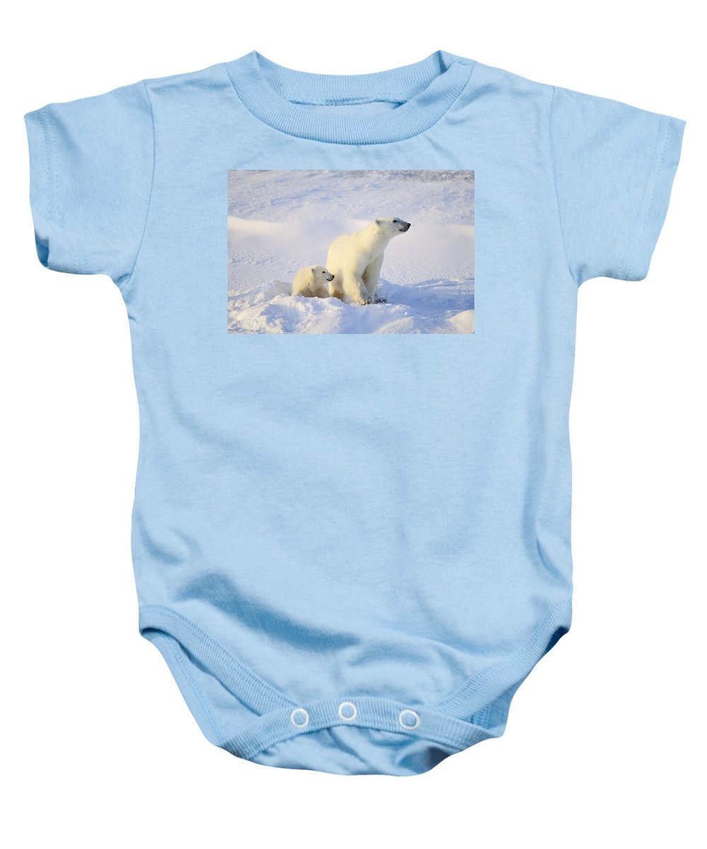 Winter Baby Onesie featuring the photograph Polar Bear With Cub by John Pitcher