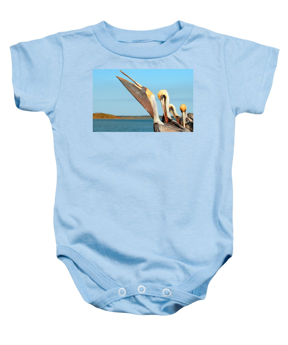 Brown Pelican Baby Onesie featuring the photograph Pouch And Preen by Andrew McInnes