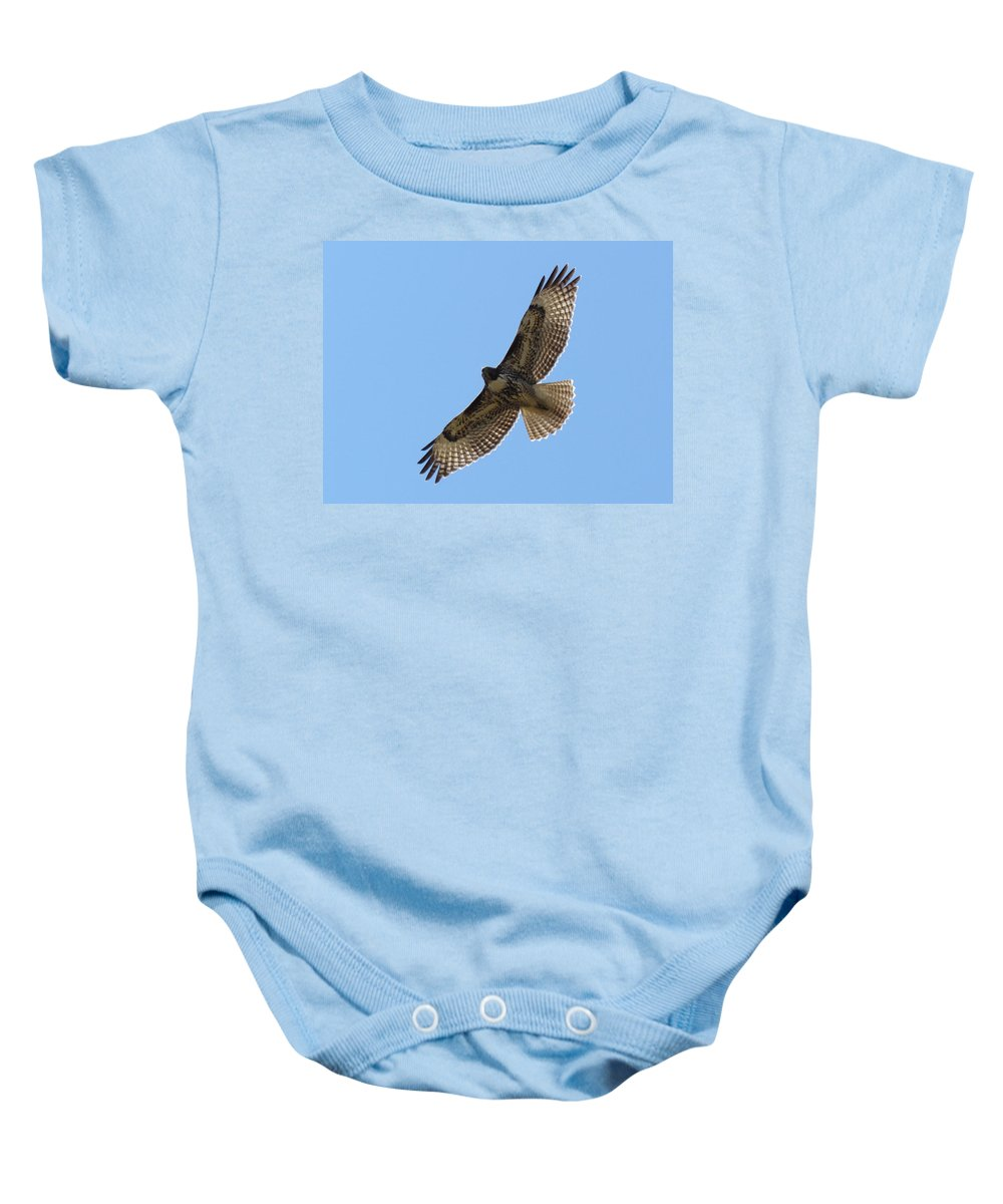 Art Sale Baby Onesie featuring the photograph Powerful Freedom by John Irons