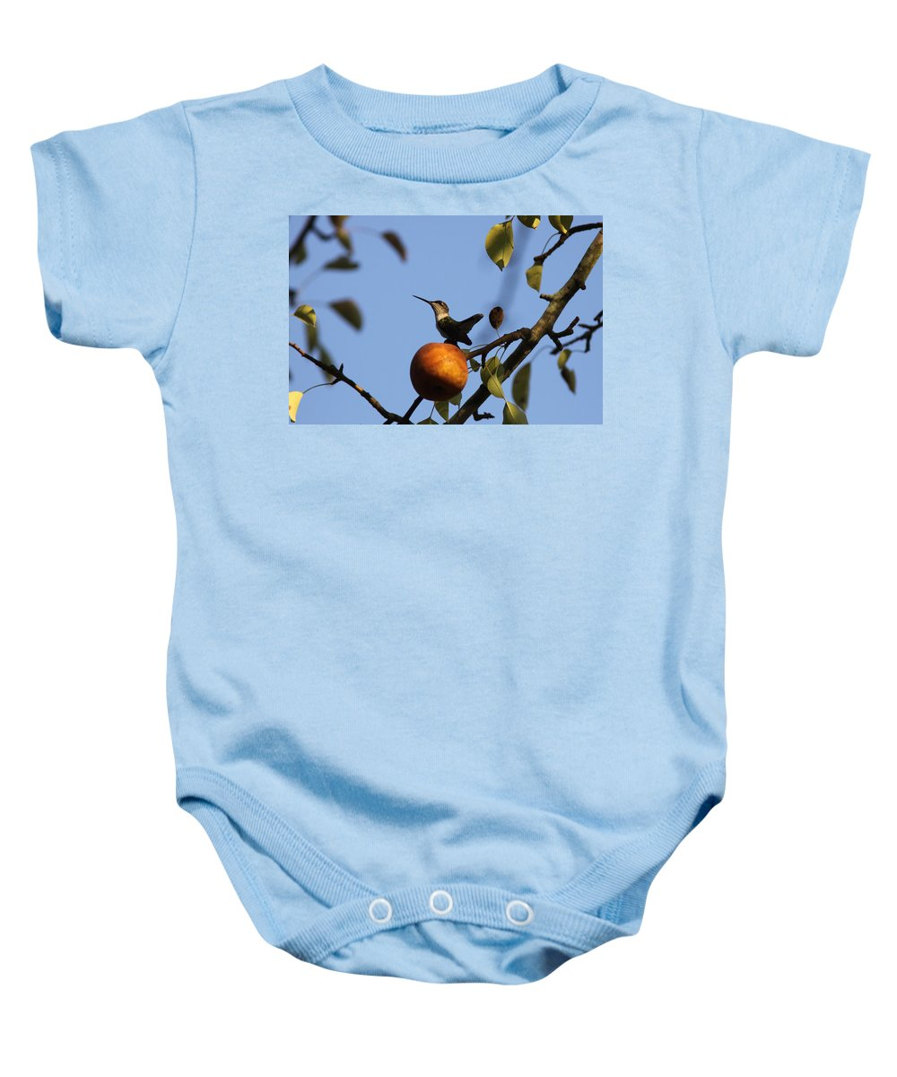 Hummingbird Baby Onesie featuring the photograph Private Reservoir by Travis Truelove