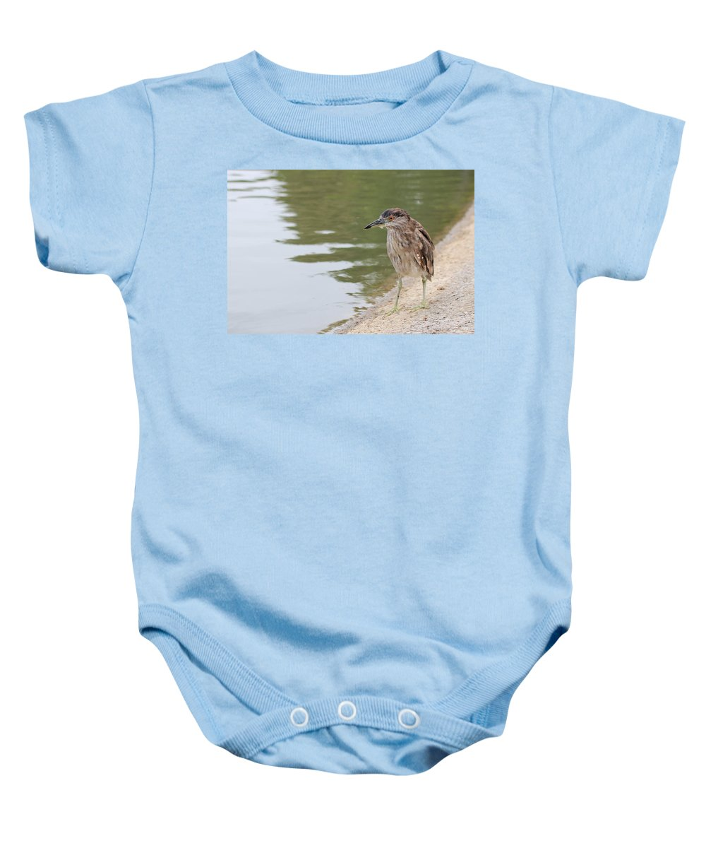 Bird Baby Onesie featuring the photograph Searching by Heidi Smith