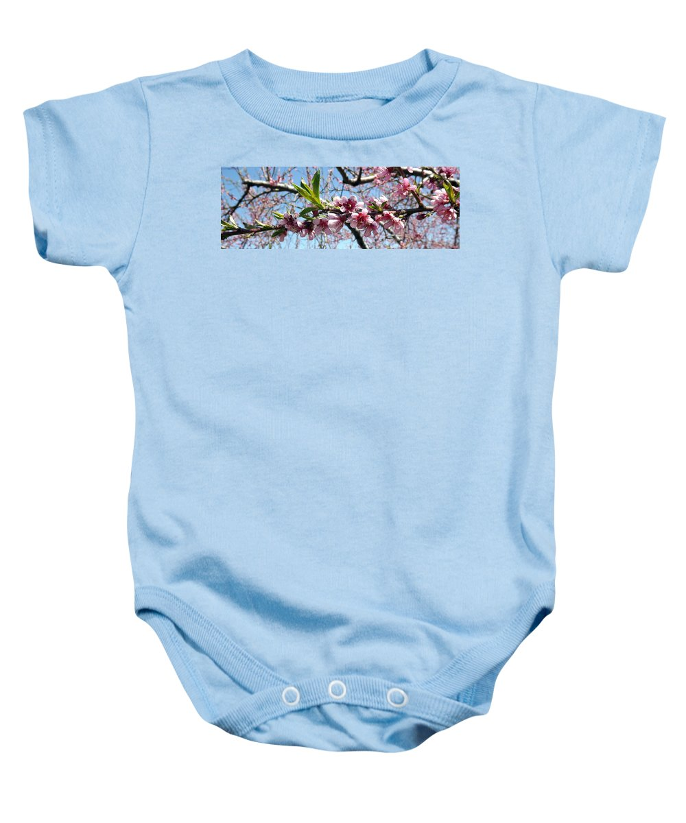 Pink Baby Onesie featuring the photograph Sweet Innocence by Shelley Blair