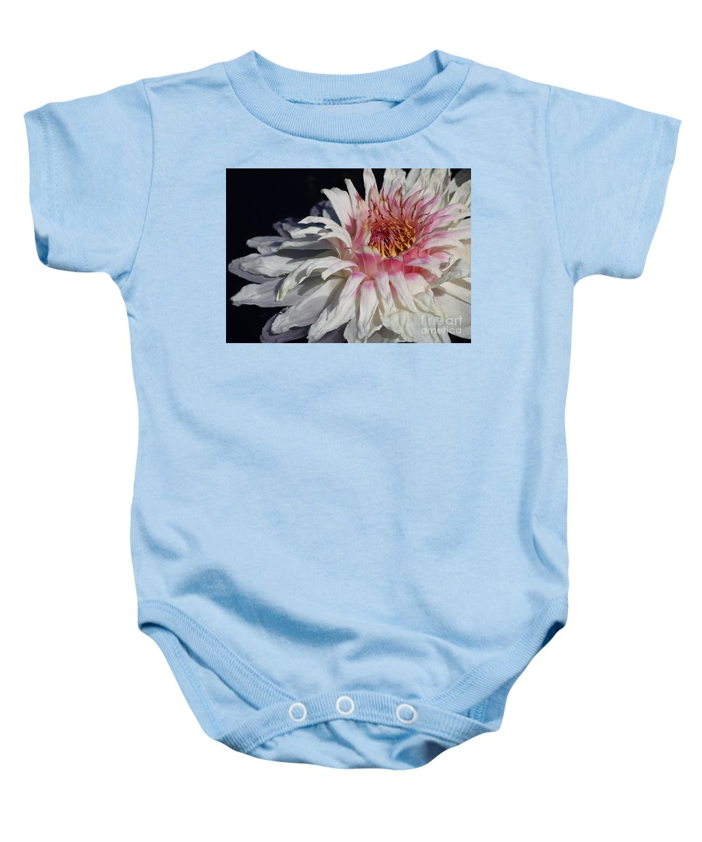 Victoria Water Lily Baby Onesie featuring the photograph Victoria Water Lily by Carol Groenen
