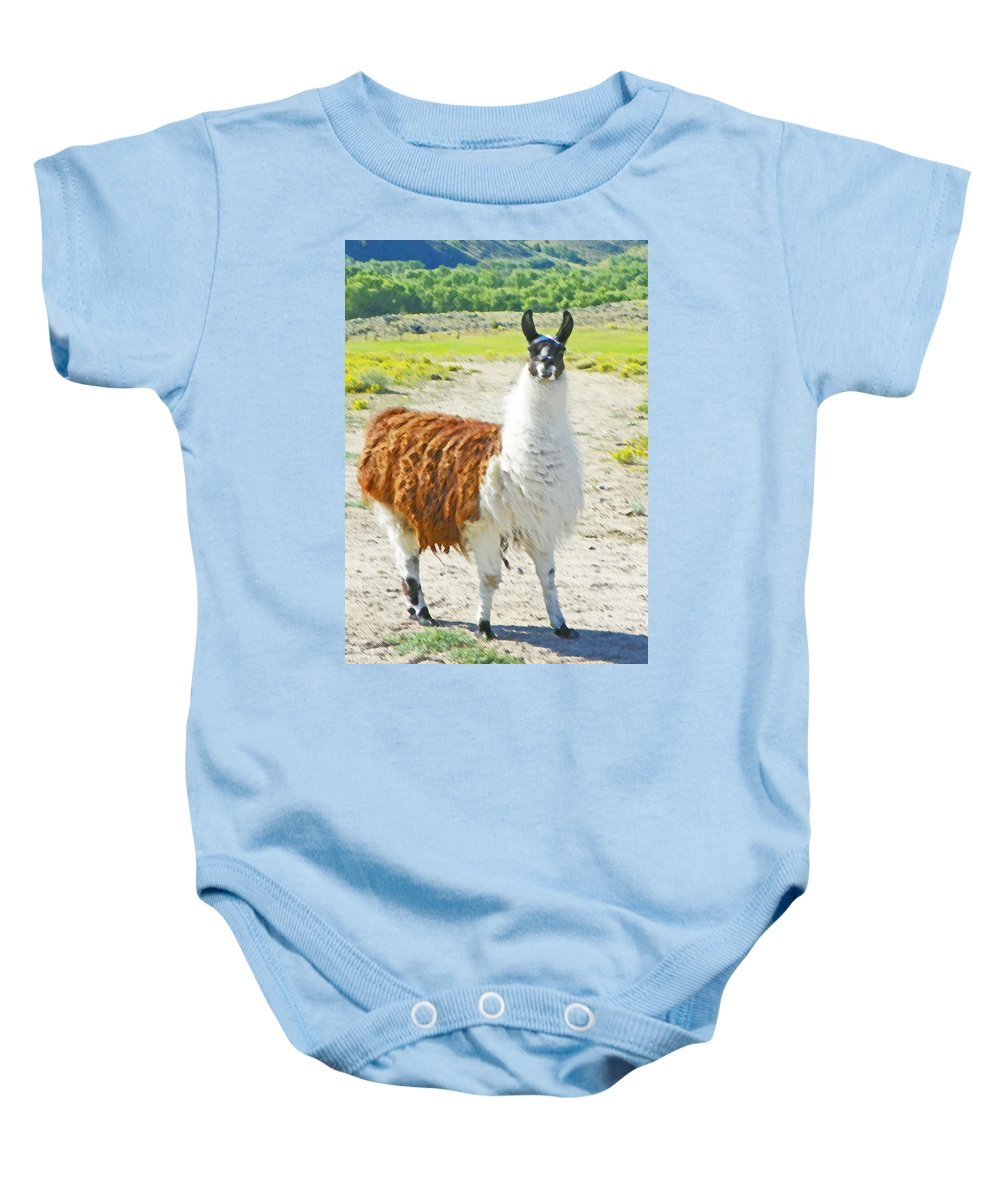 Expressive Baby Onesie featuring the photograph Wyoming Llama - El Tuffo by Lenore Senior