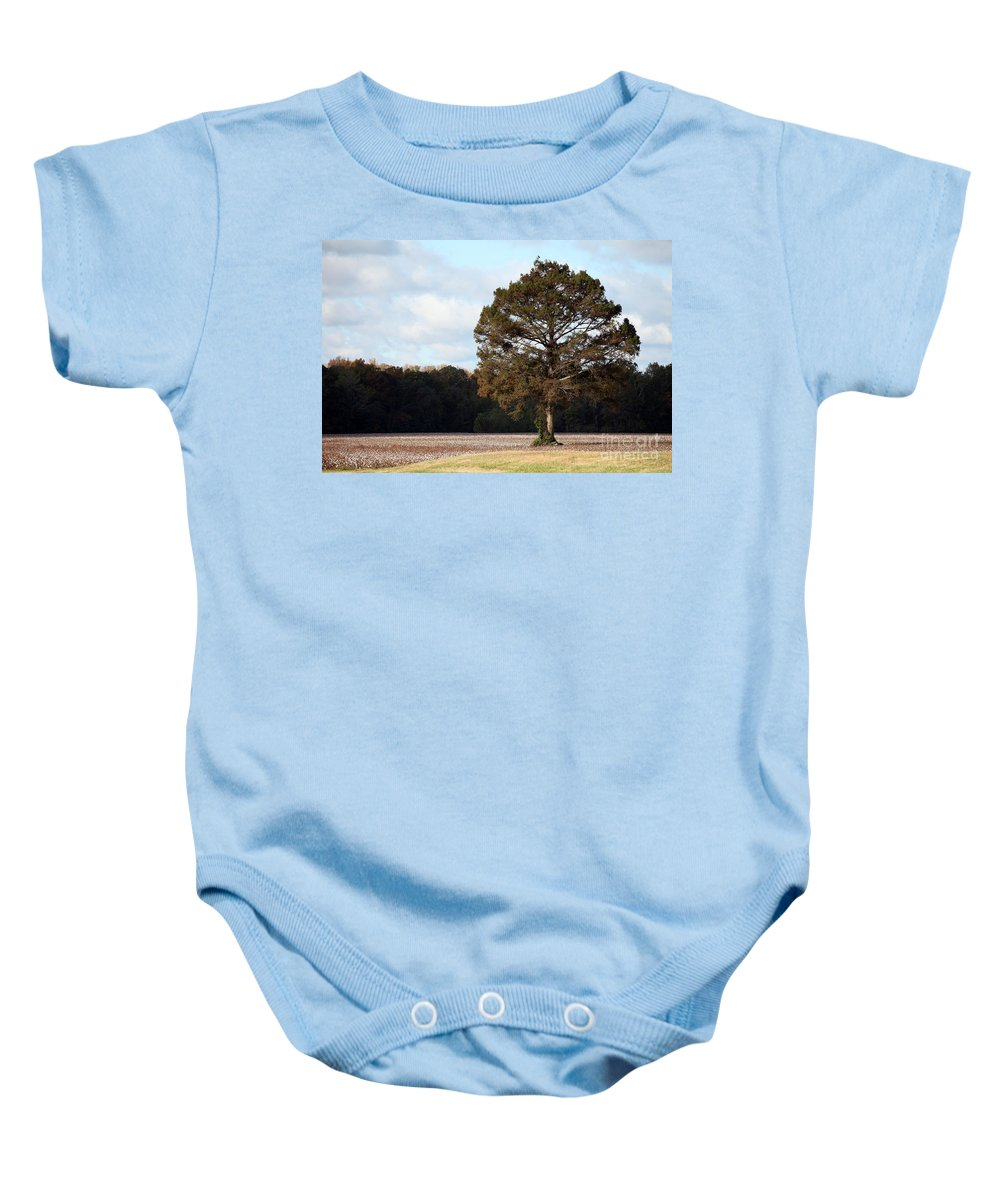 Trees Baby Onesie featuring the photograph Home by Amanda Barcon