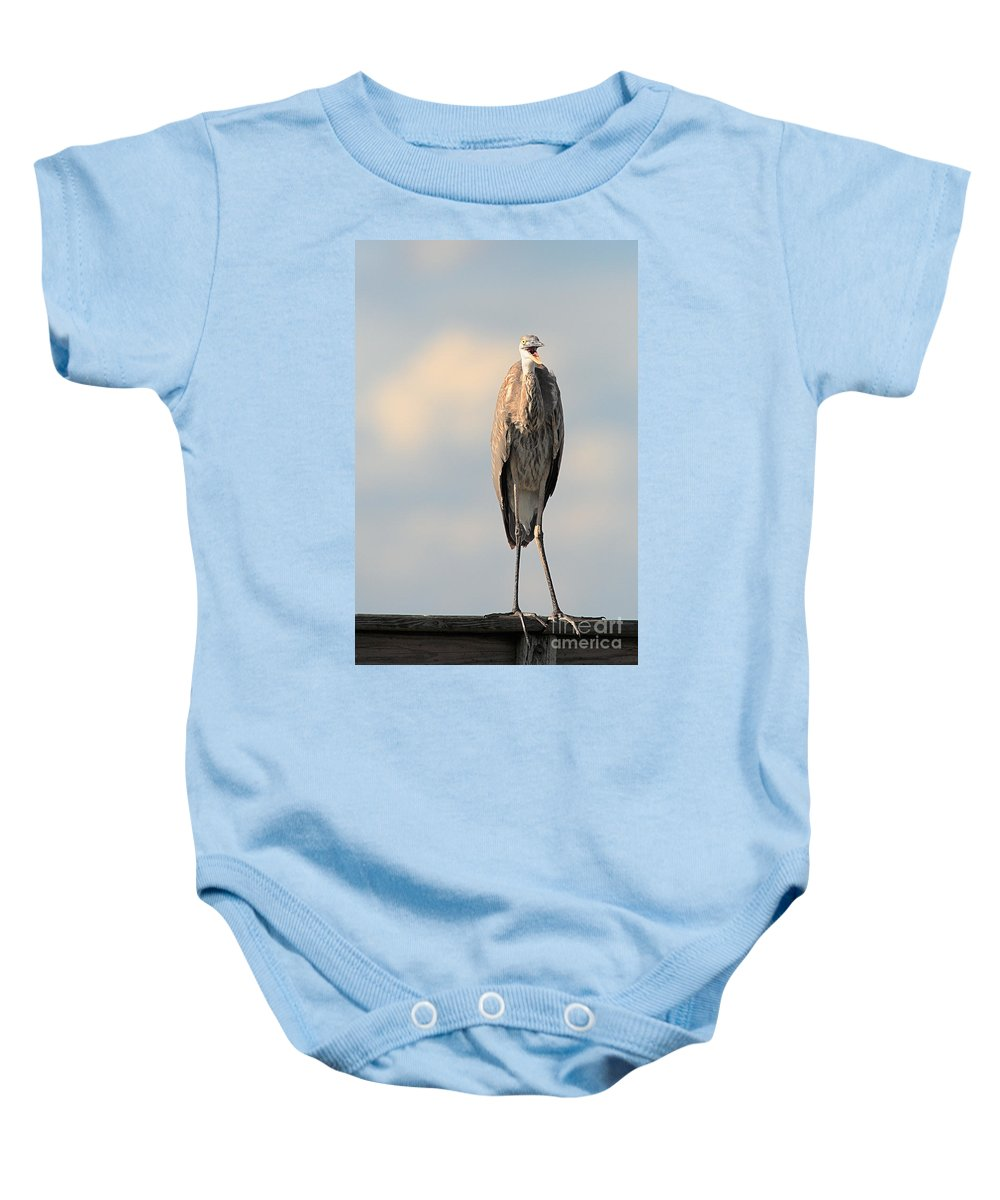 Immature Great Blue Heron Baby Onesie featuring the photograph Immature Great Blue Heron Sticks Toungue Out by Matt Suess