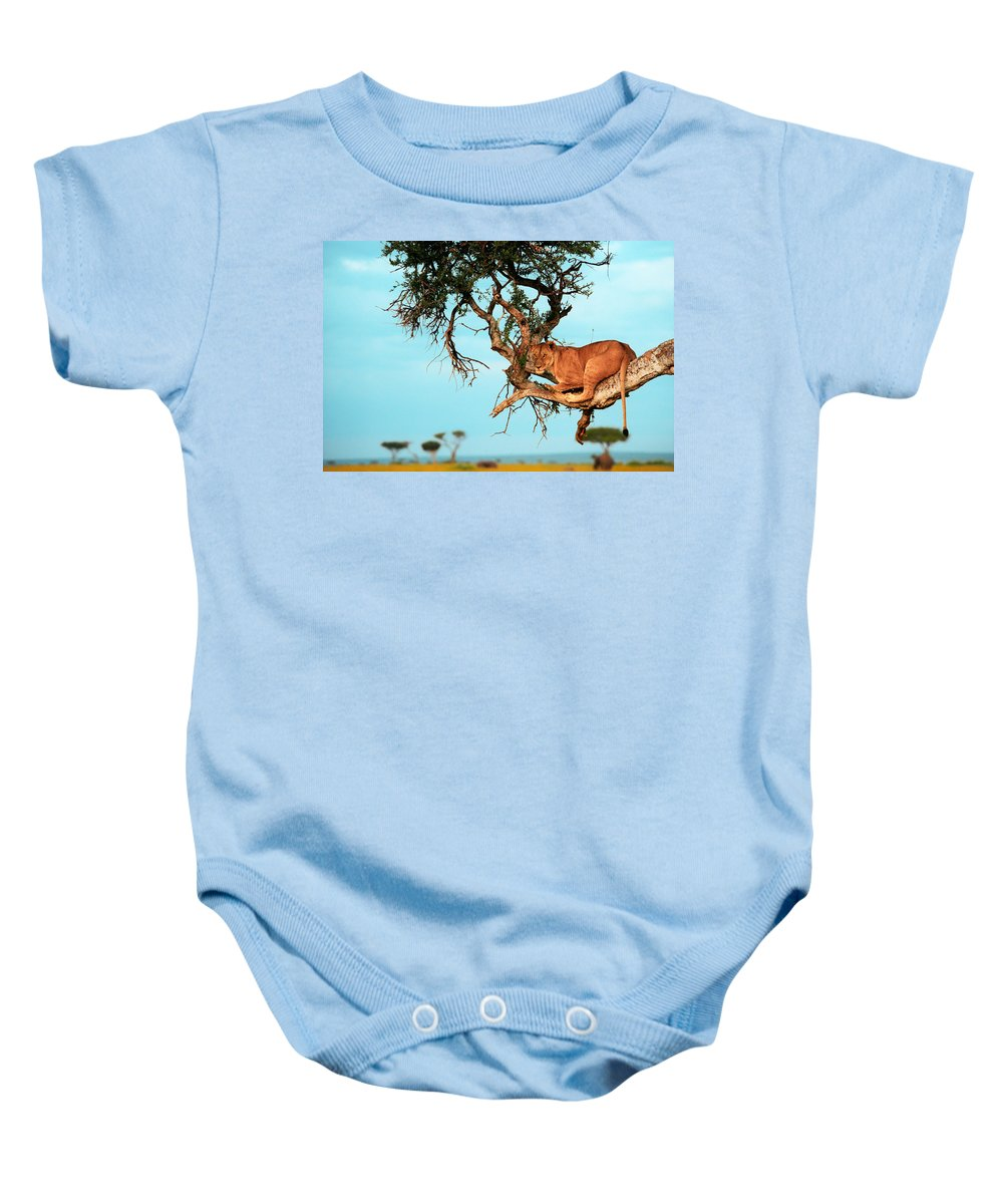 Africa Baby Onesie featuring the photograph Lioness In Africa by Sebastian Musial